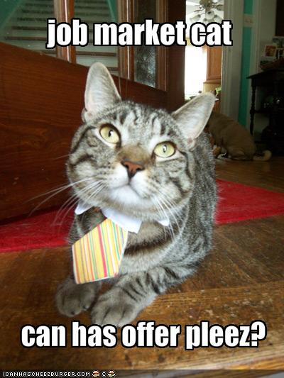 jobmarket_cat